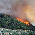Πυρκαγιές στα δάση, φωτιές στην πυροσβεστική…