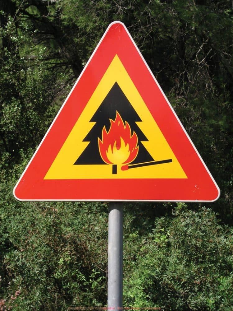 danger_forest_fires_9300348