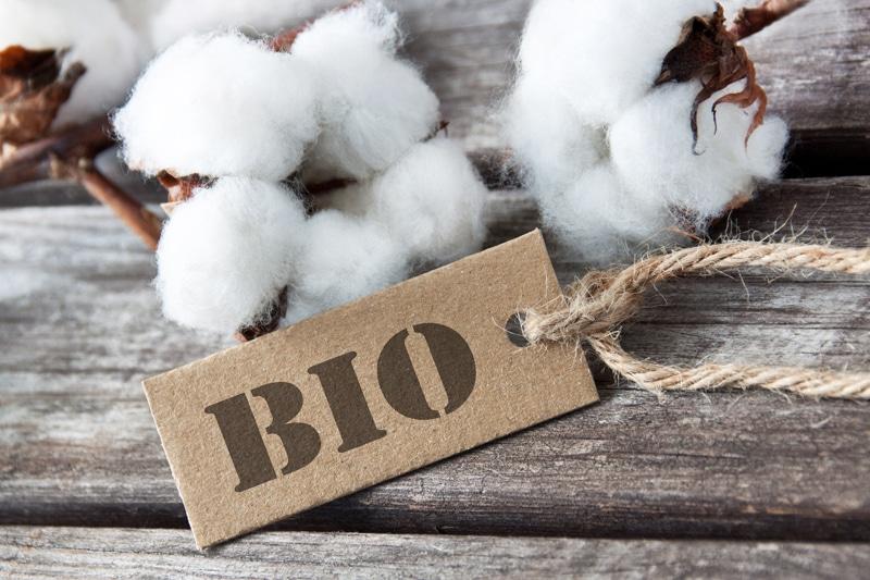 cotton-bio