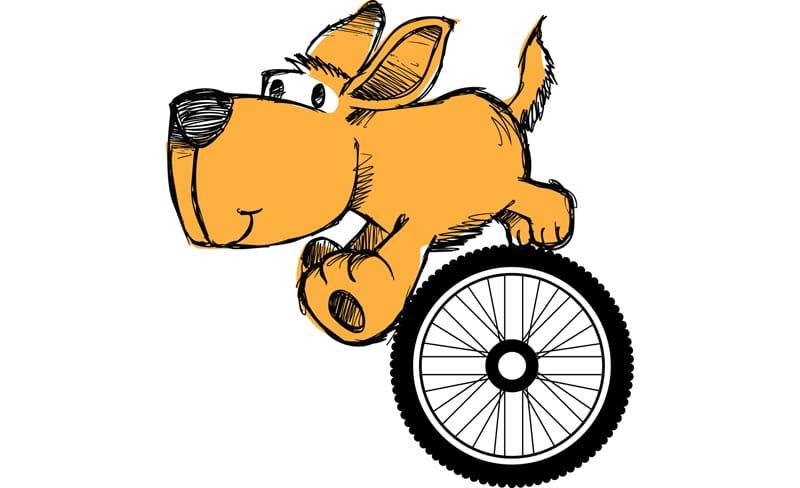 Ποδηλάτης VS αδέσποτων σκύλων