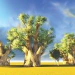 Βαοbab: το «φρούτο της ζωής» ήρθε από την Αφρική