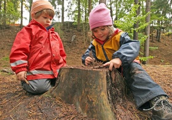 νηπιαγωγεία του δάσους-naturanrg
