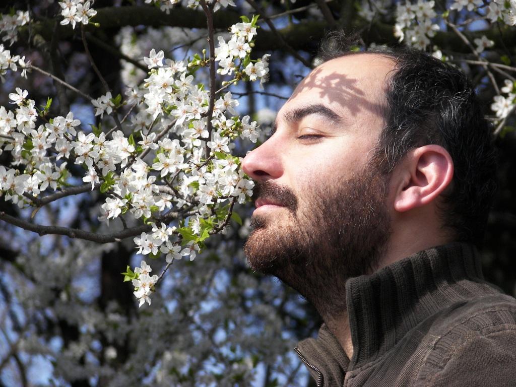 """«Το μικρό εργαστήρι της μέλισσας» στον """"Ελληνικό κόσμο"""""""