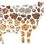 Γάλα για vegetarians και όχι μόνον
