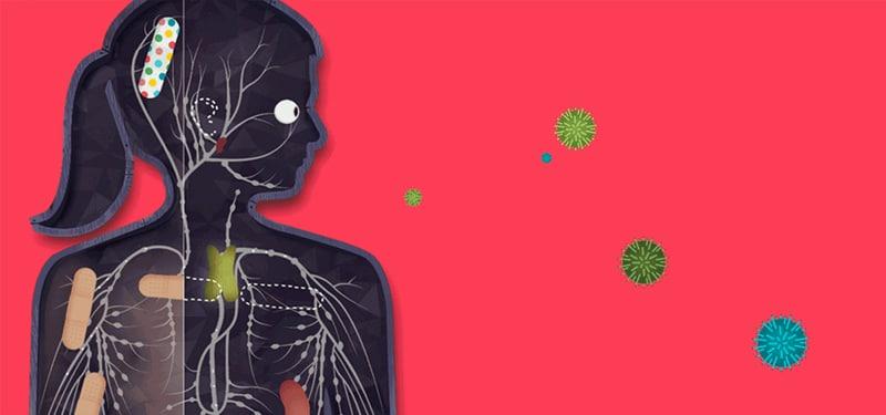 immune-system-update