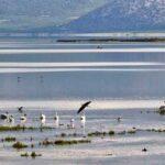 Εσείς γνωρίζετε τη λίμνη Κάρλα;