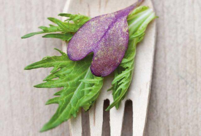Σωτήρια τα όσπρια και τα λαχανικά μετά το έμφραγμα