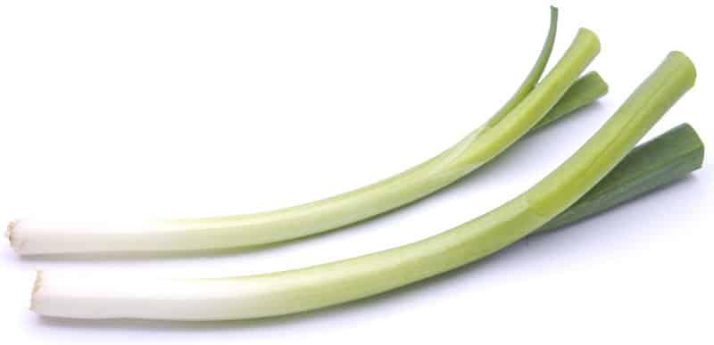 onion_fresh