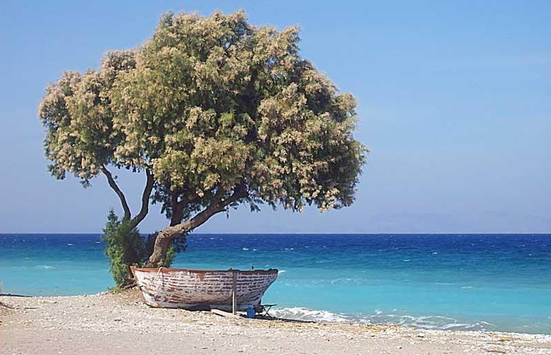 παραλία με βάρκα στην αμμουδιά