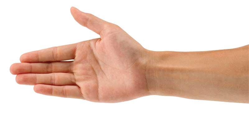 χέρι, καρπός, τένοντας