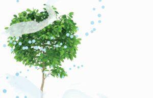 Πώς να δροσιστείτε το καλοκαίρι υγιεινά και οικολογικά