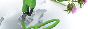 Ελλάδα βιοκαύσιμα αγριαγκινάρα