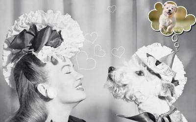 Γυναίκα σκύλος ασπρομαυρη