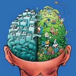 οι επιπτώσεις της μαριχουάνας στον εγκέφαλο
