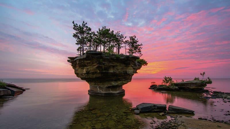 Το γλυπτό της φύσης στη λίμνη!