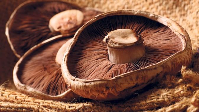 portobello_mushrooms