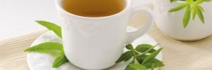 louiza_herb tea