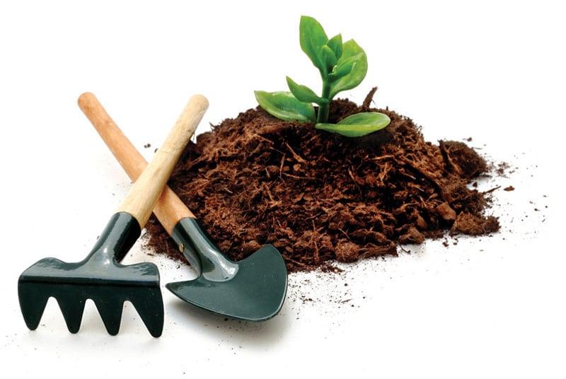 soil_plant