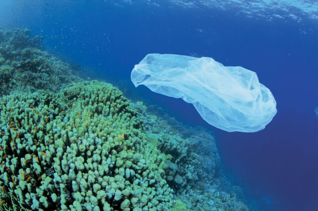 Η πλαστική σακούλα αντεπιτίθεται!