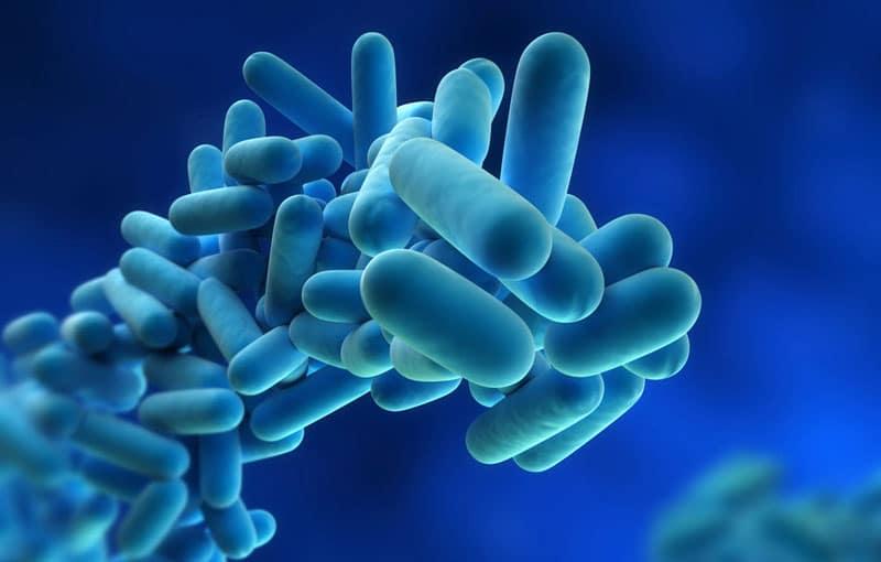 Αντιβιοτικά: δημιουργήσαμε» τα πιο ανθεκτικά μικρόβια
