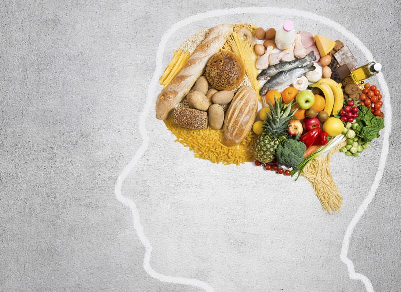 brain, nutrition