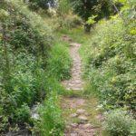 Εγκαινιάστηκε το Menalon Trail