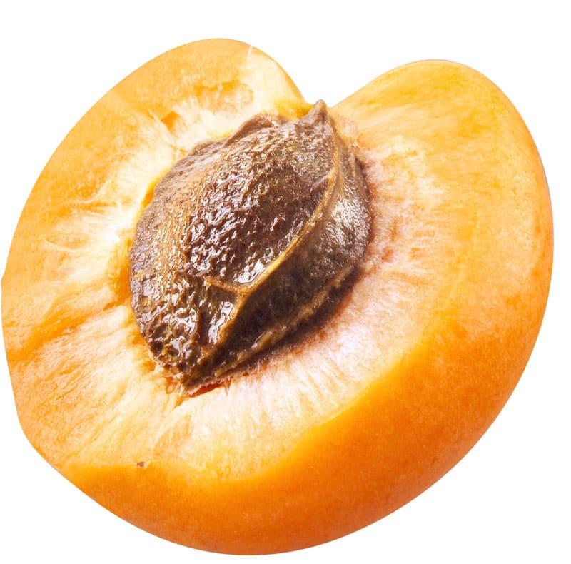apricot slice
