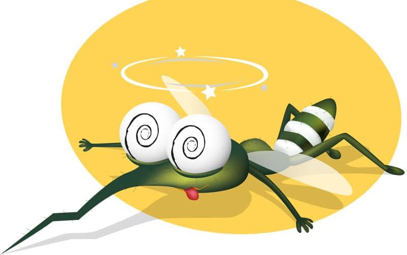 Αντιμετωπίστε οικολογικά τα κουνούπια