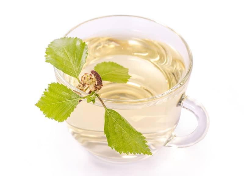 birch_tea