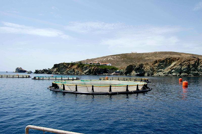 fishfarming_01