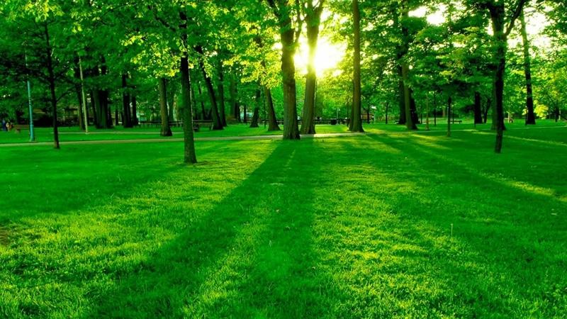 «Το περιβάλλον και εγώ» στο Ευγενίδιο