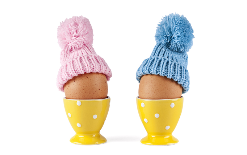 eggs, girl-boy concept, pink-blue cap
