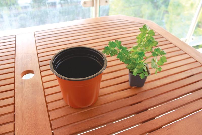 celery-pot