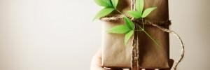eco-christmas-gift