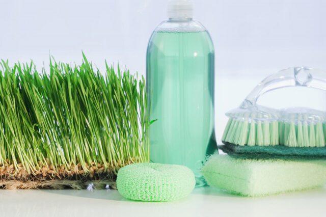 Detox Your Home: Χημικά στο σπίτι; Όχι ευχαριστώ!