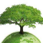 Πηγή ιδεών για το περιβάλλον