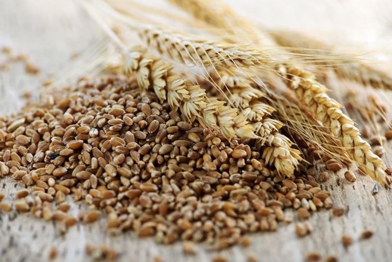 Whole-Grain-Wheat