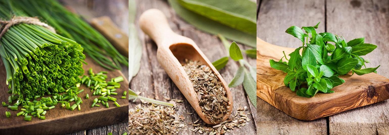 magic-herbs-Βότανα για αδυνάτισμα