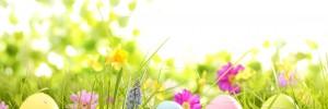 easter-eggs-