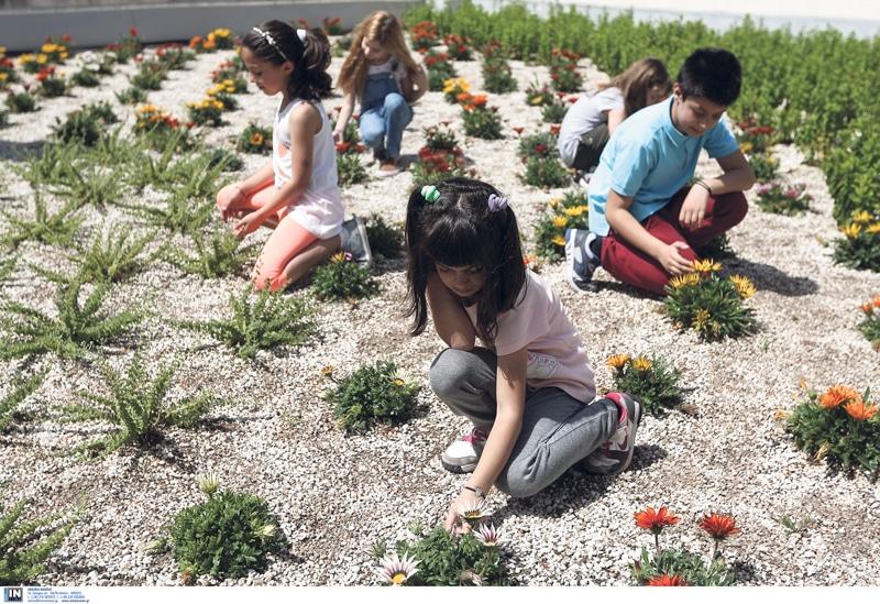 Πράσινες στέγες απέκτησαν 13 σχολεία της Αθήνας