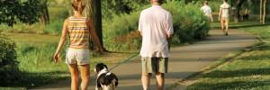 Walking-couple