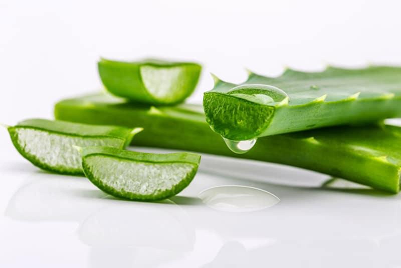 cut-aloe-vera-Αλόη: ελιξίριο υγείας & ομορφιάς