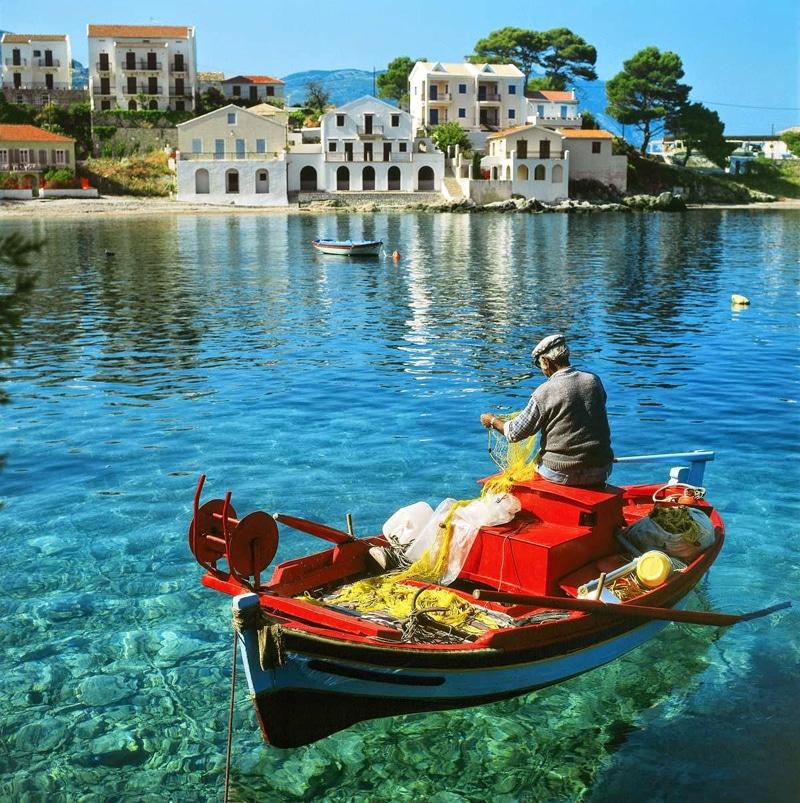 STOP στη γονο...κτονία στις ελληνικές θάλασσες