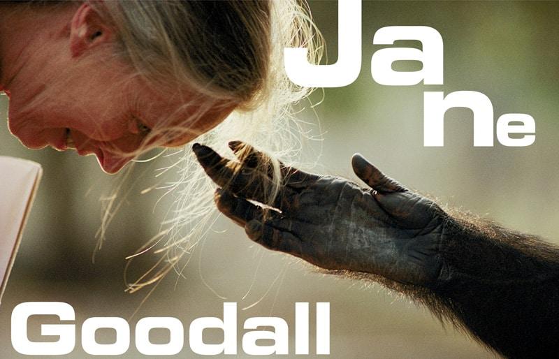 NaturaNrg#78-Goodall6-Jane Goodall