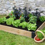 Καλλιέργησε τα δικά σου λαχανικά στο σπίτι με έναν απλό πίνακα!
