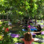 Healthy Sun-Day workshop: Ζήσαμε μια ηλιόλουστη ημέρα ευεξίας!