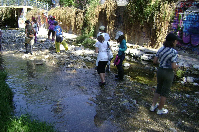 Βρέθηκαν νεκρά ψάρια στο ρέμα της Πικροδάφνης στο Παλαιό Φάληρο