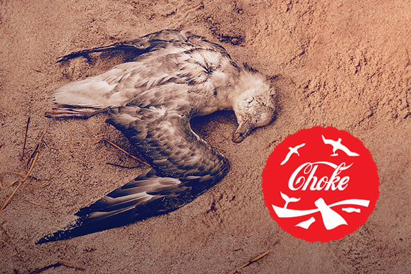 Coca Cola κάνε την αλλαγή