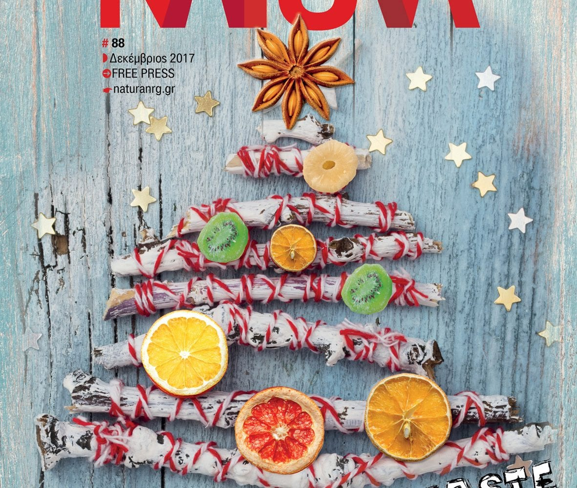 NaturaNrg-Dec-2017-Cover#88
