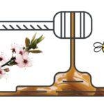 Μέλι Manuka: το πανίσχυρο φυσικό αντιβιοτικό